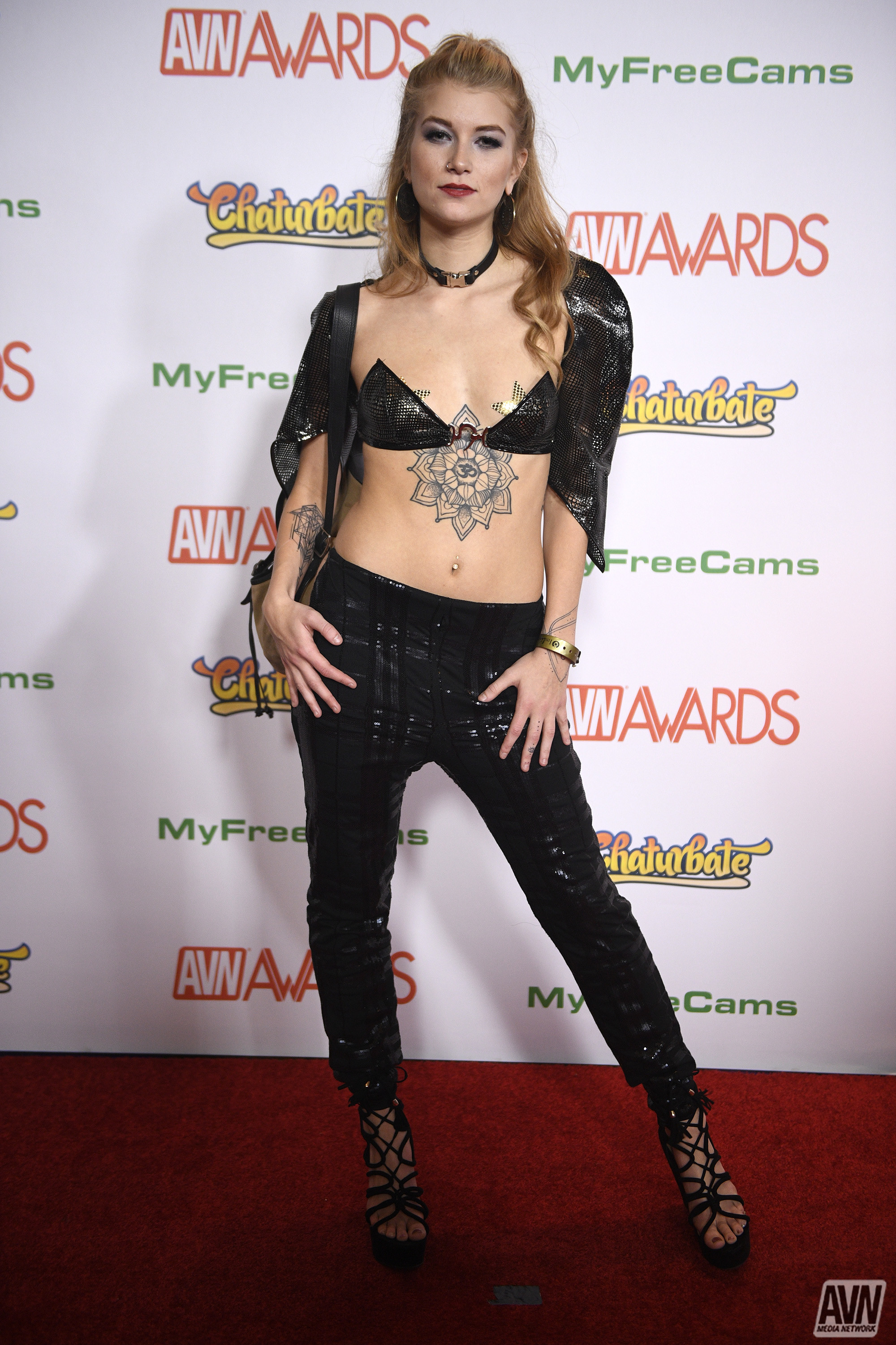 Best Sex 2017 Avn Awards 2017